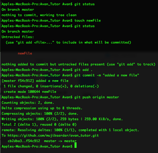 "Screenshot of git status, touch newFile, git status, git add ., git commit -m ""Added a new file"" and finally git push origin master"